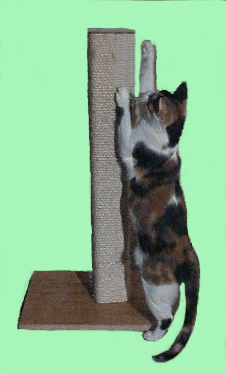 sisal-scratching-post-c.jpg